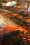 La lumière du soleil rend la Hoëgne presque sanguine, Vallée de la Hoëgne, Pont de Belheid, près de Solwaster, Hautes Fagnes