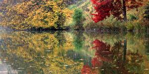 Réflexion des arbres dans un des étangs du Domaine Solvay à La Hulpe (Belgique)