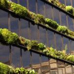 Combinaison d'un bâtiment de bureaux avec la nature suspendue à ses fenêtres et le ciel bleu suggérant plutôt les vacances que le travail de bureau