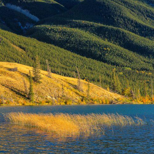 Fin de journée sur la rivière Athabasca (Alberta)
