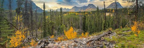 La vallée de l'Athabasca