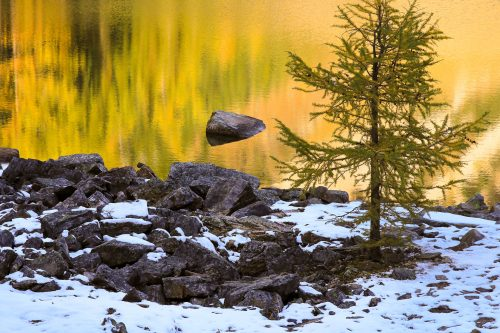 The shore of Lake Agnes