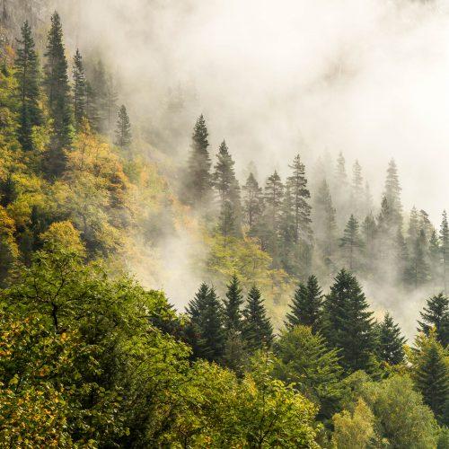 Après l'orage (Vallée de Bujaruelo, Pyrénées espagnoles)