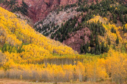 Contrastes des couleurs automnales et de la roche (Maroon Lake, Colorado)