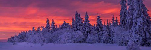 Sunrise in Botrange