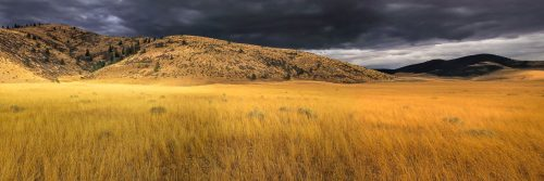 Prairie infinie (Montana)