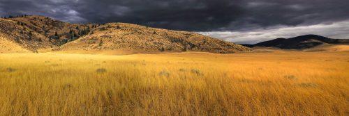 Infinite prairie (Montana)