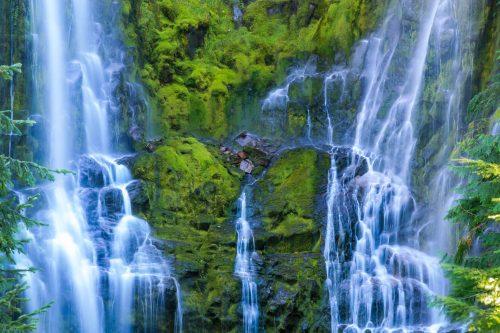 Lower Proxy Falls (Oregon)