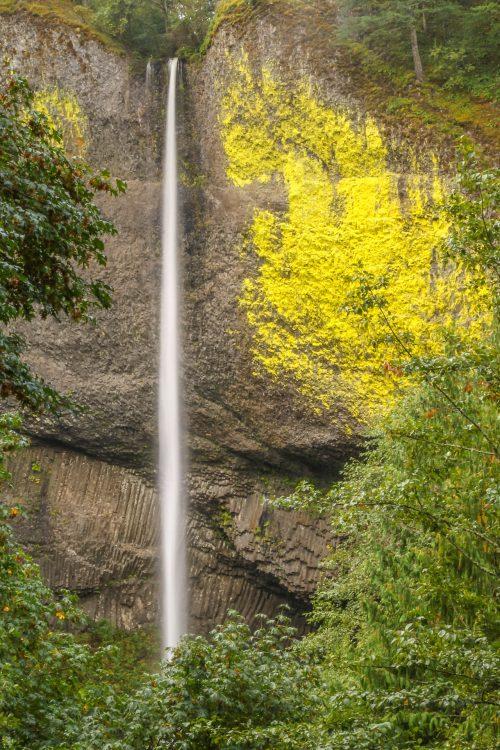 Latourell Falls (Gorge de la rivière Columbia, Oregon)