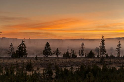 Lever de soleil le long de la rivière Madison (Yellowstone National Park, Wyoming)